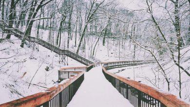 ۱۱مکان مناسب برای یک پیادهروی آرام زمستانی در تورنتو