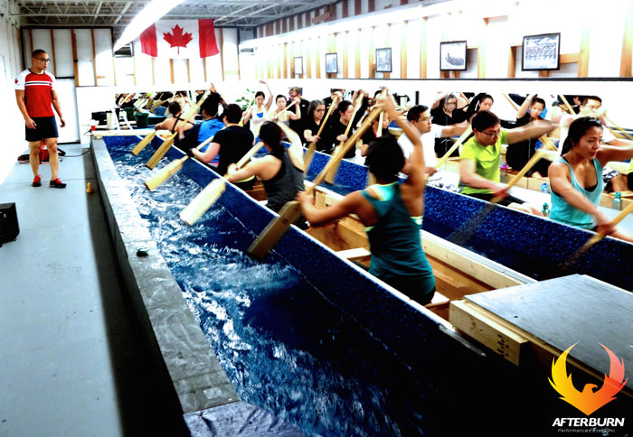 Dragon Boat Indoor Paddling