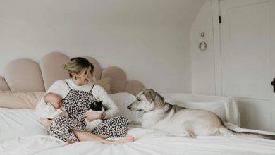 Photo of آلیسا گریسون برای مادر شدن در انتظار شاهزاده و اسب نماند، حالا برای خانهدار شدن هم منتظر نمیماند