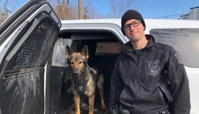 سگ پلیس دختر بچه سه سالهای که در جنگل گم شده بود را پیدا کرد