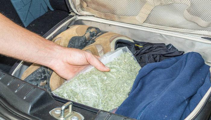 پرستار انتاریویی با ۱۵۰ پوند ماریجوانا در مرز کانادا و آمریکا متوقف شد