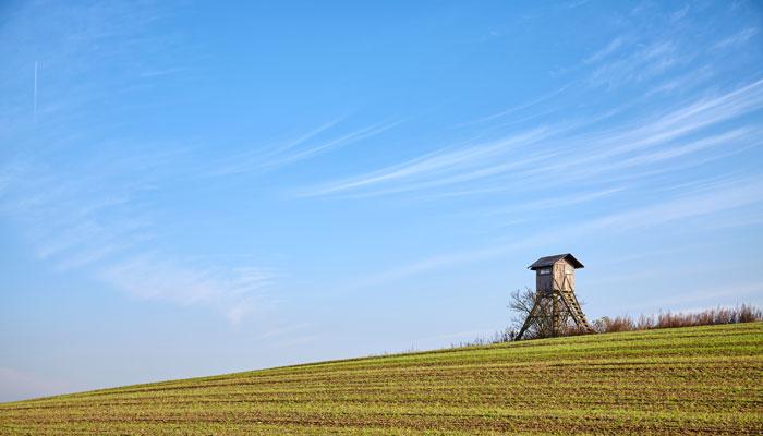 Photo of ارزش زمینهای کشاورزی در کانادا چقدر رشد دارد؟ کرونا چه تاثیری داشته است؟