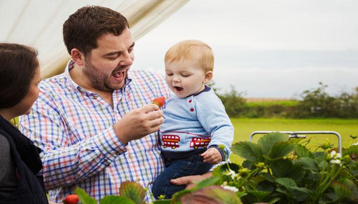 Photo of برای چیدن توت فرنگی به این ۸ مزرعه نزدیک تورنتو سر بزنید
