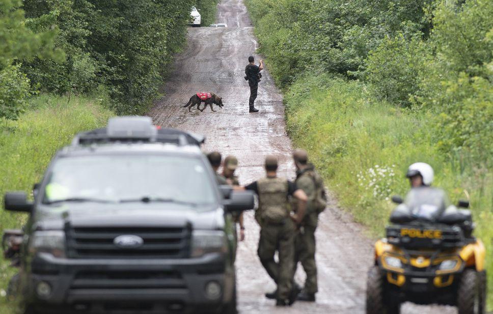 جنازه دختران گمشده کبک پیدا شد؛ پلیس در جستجوی پدر فراری
