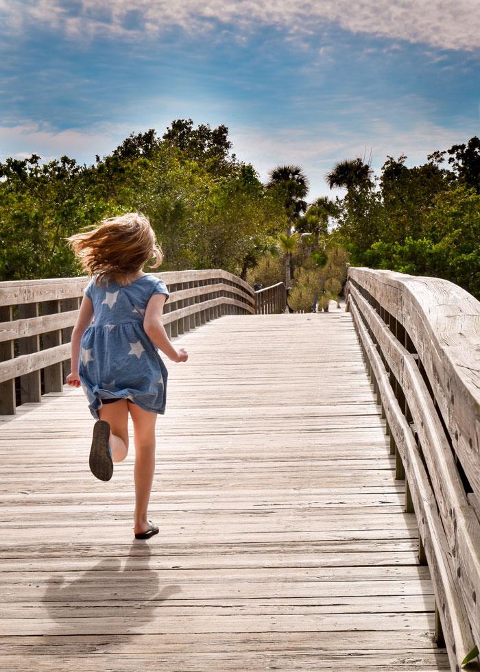 ده مسیر پیادهروی چوبی در نزدیکی تورنتو که چشماندازهایی نفسگیر دارند