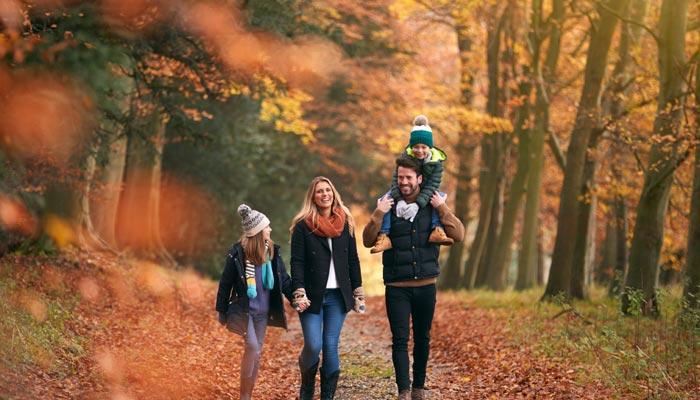 3 مقصد رویایی در نزدیکی تورنتو که پاییز شما را رنگارنگ میکند