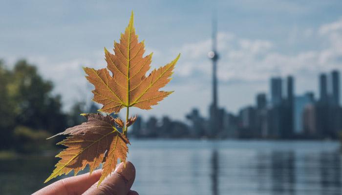Photo of تورنتو امروز به عنوان سیزدهمین شهر برتر دنیا معرفی شد