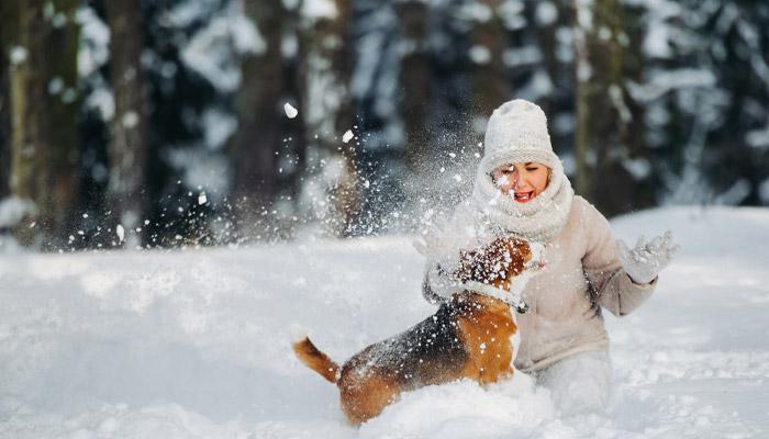 ۶ شغل در تورنتو برای عاشقان حیوانات و طبیعت که تا ۳۲ دلار در ساعت حقوق دارد