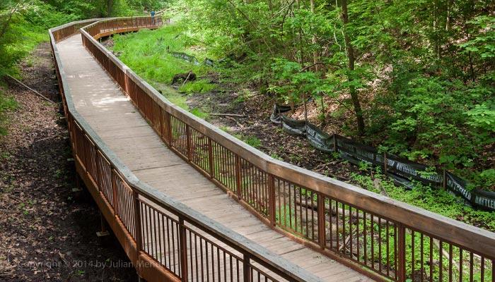 ۱۵ دره در تورنتو برای یک پیادهروی فراموشنشدنی در آخر هفته